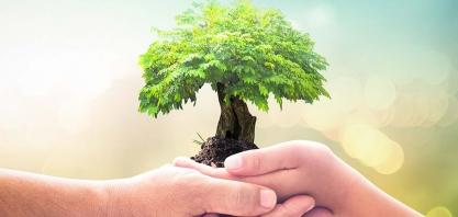 Usinas preservam mais de 121 mil hectares de vegetação, equivalente à área da cidade do Rio de Janeiro