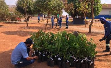 WD Agroindustrial comemora Dia da Árvore em parceria com o IEF