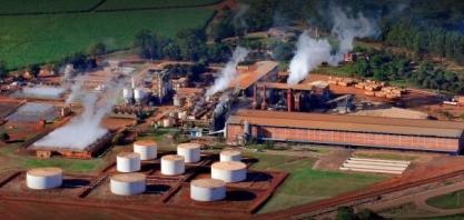 Jalles Machado fará investimento de R$ 94 milhões em projetos energéticos