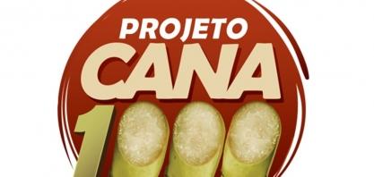 Projeto Cana1000: produtividade do setor canavieiro em pauta