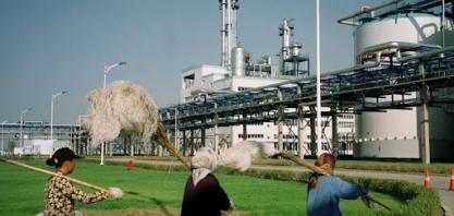 Produção de etanol na China deve diminuir para 3,4 bi de litros, diz USDA