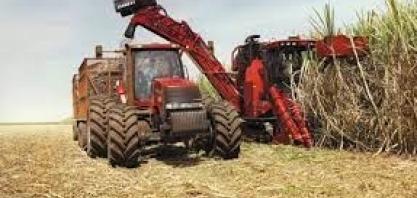 Produção agrícola brasileira bate recorde em 2020 com demanda aquecida