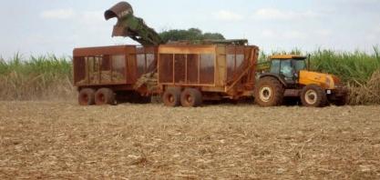 Preços altos regularão os 1,3 bi/litros de hidratado até abril, ainda contando com o de milho