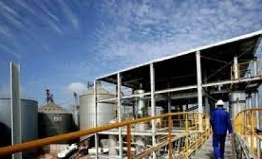 Biocombustível: entenda como o substituto dos combustíveis provenientes do petróleo, como o gás natural, a gasolina e o diesel, promete mudar o destino da humanidade
