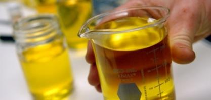 Frente do Biodiesel alerta para nova pressão sobre preço final do combustível