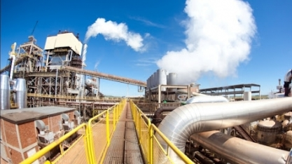 Cana: risco de redução do etanol na gasolina acende alerta