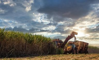 FMC participa da 21ª Conferência Internacional DATAGRO sobre Açúcar e Etanol